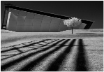 Shapes and Shadows - Accepted - John White EFIAP/p, BPE5*, CPAGB